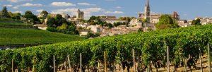 les vins de la région de libourne